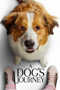 Dog's Journey - Now Playing on Demand