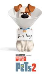 Secret Life of Pets 2 - Now Playing on Demand