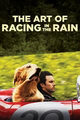 The Art of Racing in the Rain - Now Playing on Demand