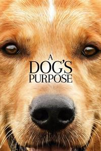 A Dog's Purpose  - Now Playing on Demand